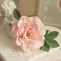Роза Cécile Brunner из фоамирана от Алены Семеновой