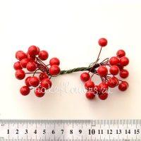 Ягоды декоративные красные