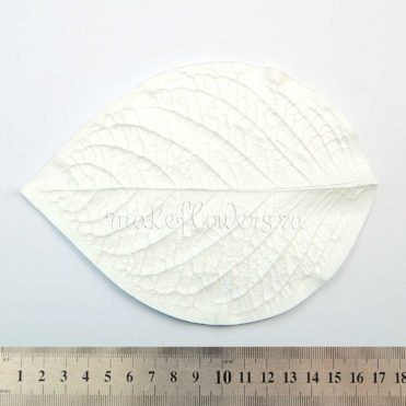 Лист Гортензия молд для фоамирана