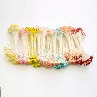 Набор тычинок больших двуцветных