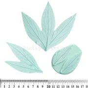 Молды Пион, Листья полный набор (4 листа). Обновленная версия