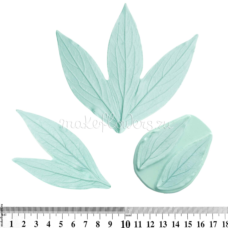 Молды Пион, Листья полный набор (4 листа) ⋆ MakeFlowers: интернет-магазин фоамирана и изолона для реалистичных и ростовых цветов