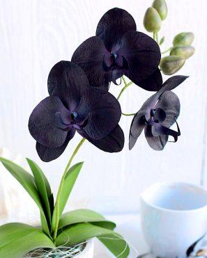 Орхидея из фоамирана мастер-класс