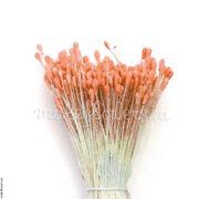 Тычинки реалистичные капли малые персиковые, 280 гол.