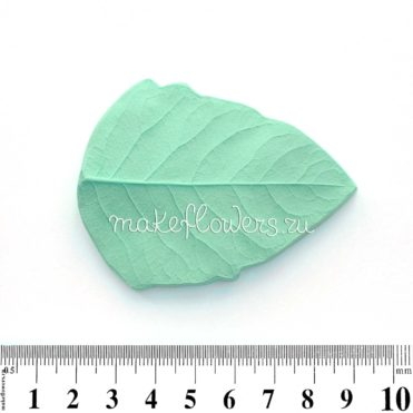 Молд лист Снежноягодник большой