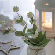 Молд снежноягодника. Автор работы Екатерина Ахрамович