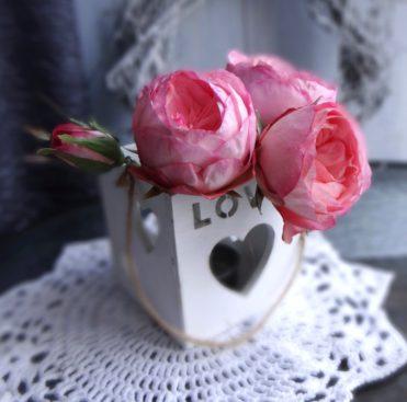 Молд лепестка пионовидной розы. Автор работы Татьяна Каплина