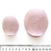 """Молд Лепесток Большой Розы горка XXL (справа) в сравнении с """"большой"""" горкой (слева)"""